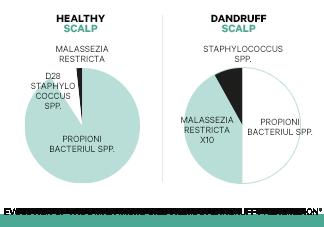 Nerovnováha mikrobiomu