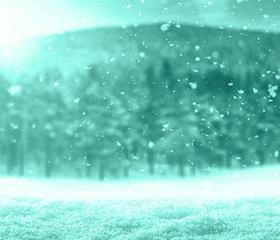 HUB_CONTENT_DHSC_FAQ_12_Do_seasons_or_climate_have_impact_on_dandruff.jpg