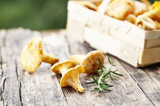 Salátové dny: jak mohou houby pomoci naší pleti vypadat mladistvě