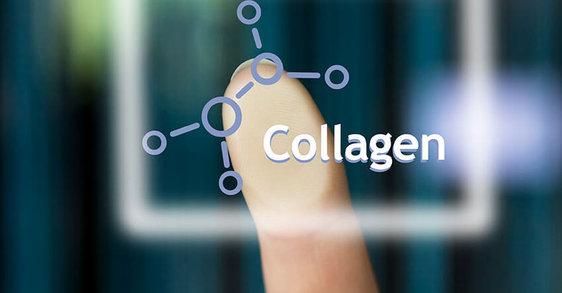 Kolagen – vše, co potřebujete vědět
